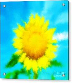 Underwater Sunflower Acrylic Print by Lorraine Heath