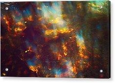 Underwater Treasure Acrylic Print by Jenny Rainbow