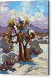 Unexpected Snowfall At Joshua Tree Acrylic Print