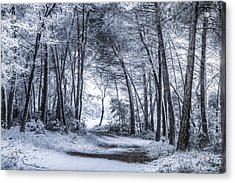 Unexpected Snowfall Acrylic Print by Marc Garrido