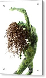 Unfurled Back View Detail Acrylic Print by Adam Long