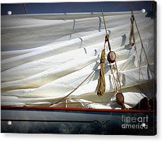 Unfurled Sail Acrylic Print by Lainie Wrightson