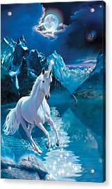 Unicorn Acrylic Print by Andrew Farley
