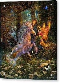 Unicorn King-angel Tarot Card Acrylic Print