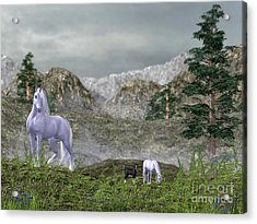 Unicorns In The Mountains Acrylic Print