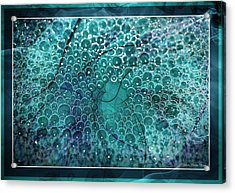 Acrylic Print featuring the photograph Unique Bubbles by Michaela Preston