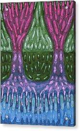 Unity Acrylic Print by Wojtek Kowalski