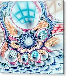 Universe In A Bag Acrylic Print by Anastasiya Malakhova