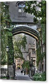 University Of Chicago Quad Acrylic Print by David Bearden