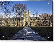 University Of Michigan Campus Acrylic Print