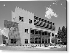 University Of New Mexico Castetter Hall Acrylic Print by University Icons