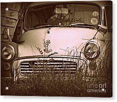 Unloved Acrylic Print by Clare Bevan