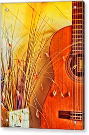 Unplayed Melody Acrylic Print by Wallaroo Images