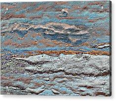 Untamed Sea 1 Acrylic Print by Carol Cavalaris
