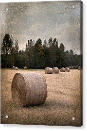 Untitled Hay Bale Acrylic Print by Robert Tolchin