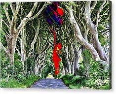 Up  Acrylic Print by Marvin Blaine