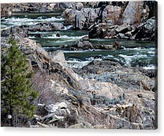 Acrylic Print featuring the photograph Up The Creek by Jan Davies