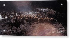 Up The Road Acrylic Print by Jerry McElroy