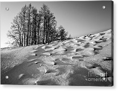 Up To The Hill Bw Acrylic Print