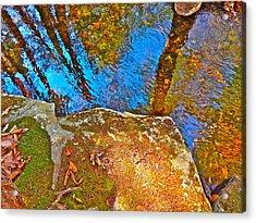 Upland Trail 2014 106 Acrylic Print by George Ramos
