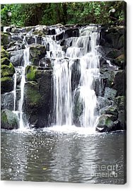 Upper Beaver Falls Acrylic Print by Chalet Roome-Rigdon