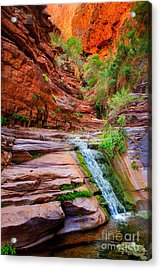 Upper Elves Chasm Cascade Acrylic Print by Inge Johnsson