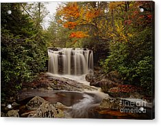 Acrylic Print featuring the photograph Upper Falls Waterfall On Big Run River  by Dan Friend