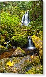 Upper Kentucky Falls - Autumn Acrylic Print