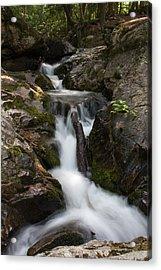 Upper Pup Creek Falls Acrylic Print