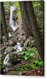 Upper Race Brook Falls Acrylic Print by Bill Wakeley