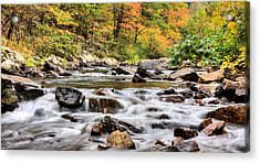 Upstream Acrylic Print by JC Findley