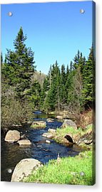 Upstream Acrylic Print by Will Boutin Photos