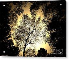 Upward Acrylic Print