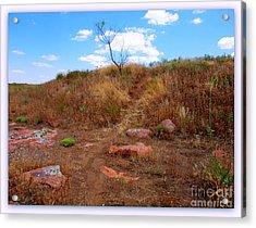 Upward Trail Acrylic Print by Mickey Harkins