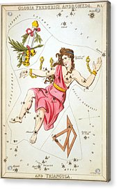 Gloria Frederici Andromeda Acrylic Print by Celestial Images