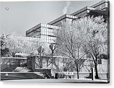 Urban Hoar Frost Acrylic Print