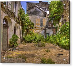 Acrylic Print featuring the photograph Urban Jungle by Kandy Hurley