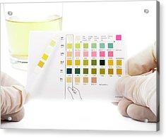 Urine Home Test Kit Acrylic Print