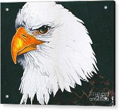 Us Bald Eagle Acrylic Print