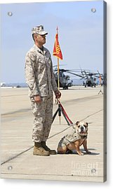 U.s. Marine And The Official Mascot Acrylic Print