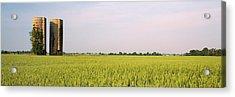 Usa, Arkansas, View Of Grain Silos Acrylic Print by Panoramic Images