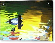 Usa, California, Coronado Acrylic Print by Jaynes Gallery
