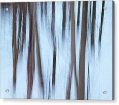Usa, California, Eastern Sierra Acrylic Print by Ann Collins