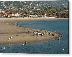 Usa, California, Santa Barbara, Views Acrylic Print by Alison Jones