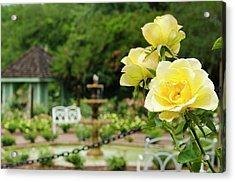 Usa, Florida Harry P Leu Gardens Acrylic Print by Michael Defreitas