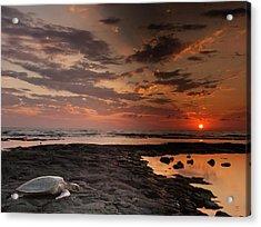 Usa, Hawaii, Honokohau Bay Acrylic Print