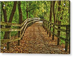 Usa, Indiana City Hiking Trail Acrylic Print by Rona Schwarz