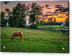 Usa, Lexington, Kentucky Acrylic Print by Rona Schwarz