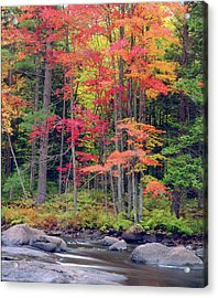 Usa, New York, Autumn In The Adirondack Acrylic Print
