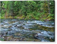 Usa, Oregon, Mount Hood National Acrylic Print
